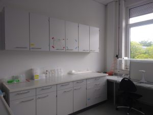 Our working space for wet chemistry.